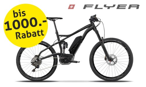 Flyer E-Mountainbikes zu Sommerpreisen